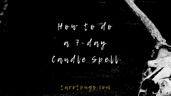 How to do a 7-day Candle Spell | TarotPugs