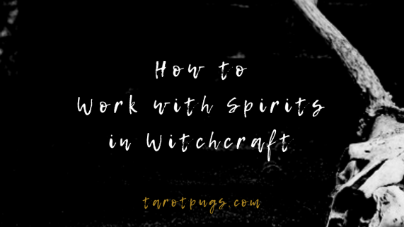 Find out how to work with spirits in witchcraft, magick, spells and divination.