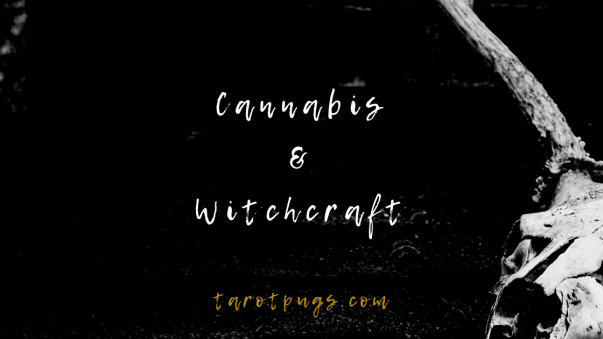 Find out about the use of cannabis in witchcraft.